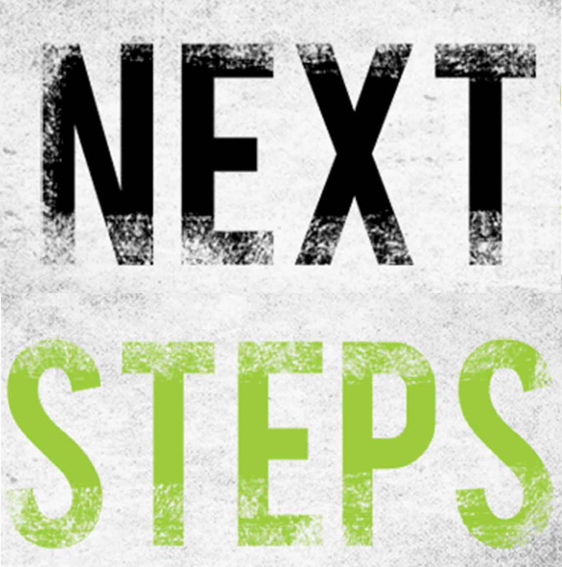 Next Steps: The Work of the Human CommunityNetwork